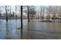 Bafra'da yer altı suları bahçe ve tarım arazilerini göle çevirdi