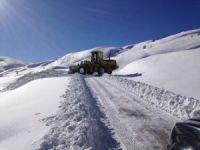 Muş'ta karla mücadele 2 milyon TL harcandı