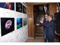 Kuşadası'nda su altı fotoğrafları sergisi açıldı