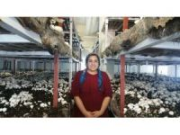 Kadıoğlu, Kültür mantarı tesisini ziyaret etti