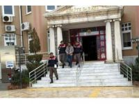 6 göçmenin ölümüne neden olan organizatör, hayvan hırsızlığından yakalandı