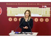 Bağımsız Ankara Milletvekili Aylin Nazlıaka: