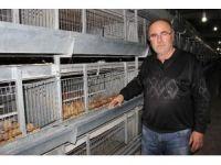 Üreticide viyolü 6 lira olan yumurta marketlerde 12 ila 20 lira arasında satılıyor