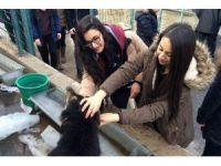 Liseli öğrencilerden hayvanseverlik örneği