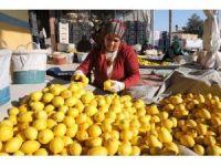 Ekşi limon ihracatla ekonomiyi tatlandırdı