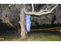 Kendini ağaca asarak intihar etti