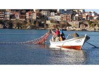 Yunustan'dan kaçan kefaller, Amasralı balıkçıları sevindirdi