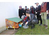 Kedi ve köpekler için GTÜ kampüsüne besleme noktaları kuruldu