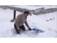 Kimsesiz engellinin karla mücadelesi