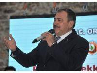 """Orman ve Su İşleri Bakanı Eroğlu: """"Bu bir hükümet sistemidir, rejim değişikliği söz konusu değildir"""""""