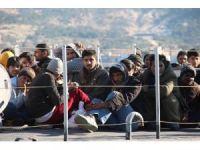 Foça'da, 115 Suriyeli göçmen yakalandı