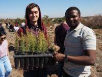 ESOGÜ TÖMER'de Türkçe öğrenen öğrenciler 500 fidanı toprakla buluşturdu
