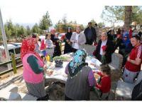 Başkan Kara mesire alanında vatandaşlara karanfil dağıttı