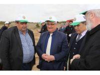 Yeşil Aksaray için fidanlar toprakla buluşturuldu