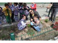 Iğdır'da Okul bahçesi çiçek bahçesi oldu