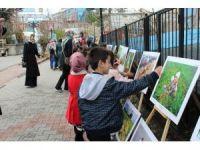 Bingöl'de 'Tarım ve İnsan' konulu fotoğraf sergisi