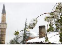 Yaza hazırlanan Eskişehir'de kar sürprizi