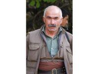 PKK'nın sözde Sincar sorumlusu, oğlu ve kardeşiyle birlikte öldürüldü