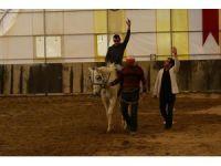 Uşak Belediyesinden ücretiz at ile terapi hizmeti