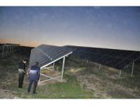 Rektör Alma, güneş enerjisi tesislerini gezdi