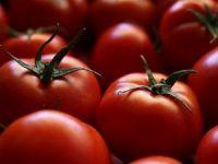 Enflasyonu tek haneye indirecek 'gıda tedbirleri' hazır