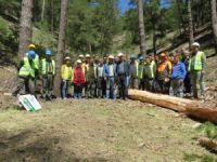 Ormanda üretim tatbikatı yapıldı