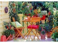 Balkonlar bahçeye dönecek