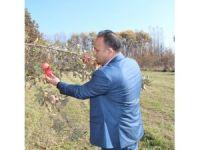 Tarım müdürü Yolcu çiftçileri uyardı