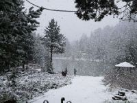Gümüşhane'nin yüksek kesimlerine lapa lapa kar yağdı