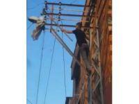 Canını hiçe saydı, elektrik direğine tırmanıp ayağı takılan güvercini kurtardı