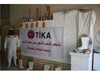 TİKA'dan Filistin'de ailelere arıcılık desteği