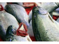 Balıkçılar Ramazan'dan umutlu