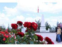 Şehir Mezarlığı peyzajıyla örnek oluyor