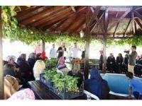 İzmit'te balkonlarda organik sebze yetişecek