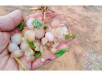Sungurlu'da tarım arazilerini dolu vurdu