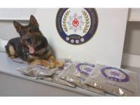 İstanbul'dan getirilen 4 kilo bonzai ile ilgili 5 gözaltı