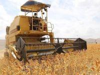 Gıda, Tarım ve Hayvancılık Bakanı Çelik: 16 bin genç çiftçiye 483 milyon lira destek