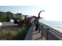 Kastamonu'da sahile şamandıra vurdu