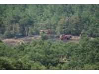 Çanakkale'de arazi yangını