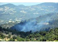 Dursunbey'de orman yangını