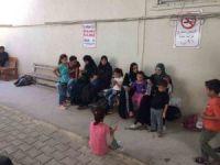 Hatay'da 47 kaçak göçmen yakalandı