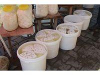 Güroymak'ta kışlık peynire yoğun talep