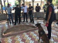 Mardin'de 'Huzurlu Parklar' uygulamasından başarıyla geçti