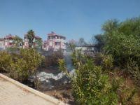 Antalya'da villa tipi evlerin bulunduğu tatil bölgesinde sazlık yangını