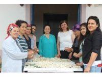Samandağlı kadınların 'İpek Köyü'nde diriliş öyküsü
