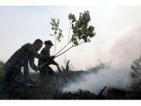 Endonezya'da orman yangını