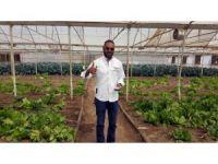 Afrika'da tarım ve hayvancılık Türk mühendislerden öğreniliyor