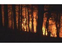 İzmir'in Bayındır ilçesindeki yangın 12 saattir devam ediyor