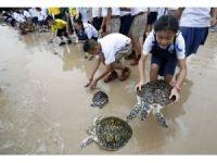 Tayland Kralı'nın doğum günü için bin 66 kaplumbağa denize bırakıldı