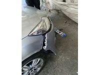 Köpekler otomobili parçaladı